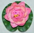 Fancy Floral Small Floating Lotus - Lite Rose