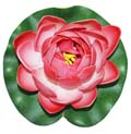 Fancy Floral Small Floating Lotus - Lite Red