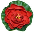 Fancy Floral Small Floating Lotus - Red